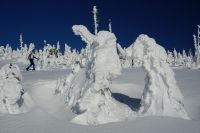 Winterfoto_2020_20